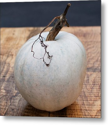 White Pumpkin Metal Print by Indigo Schneider