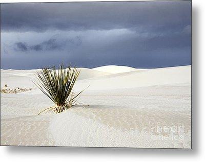White Sands Dark Sky Metal Print by Bob Christopher