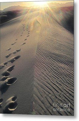 White Sands New Mexico Footsteps In The Sand Metal Print by Gregory Dyer