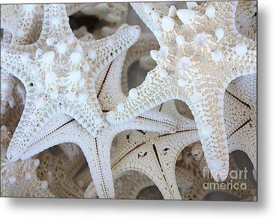 White Starfish Metal Print by Carol Groenen