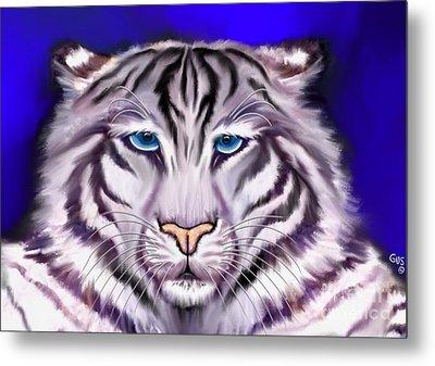 White Tiger Metal Print by Nick Gustafson
