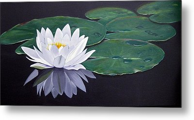 White Water Lilly Metal Print by Birgit Coath