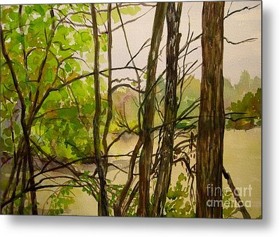 Whitewater Memorial State Park Metal Print by Katrina West