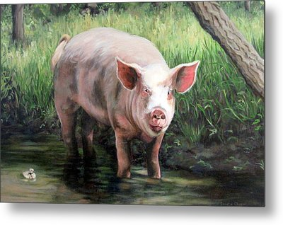 Wilbur In His Woods Metal Print by Sandra Chase
