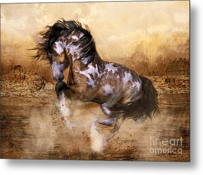 Wild And The Free Metal Print by Shanina Conway