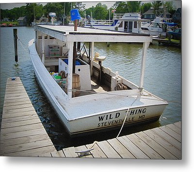 Wild Thing Metal Print by Brian Wallace