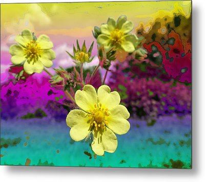 Wildflower Abstract Metal Print by Mike Breau
