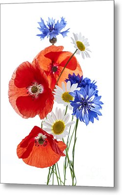 Wildflower Arrangement Metal Print by Elena Elisseeva