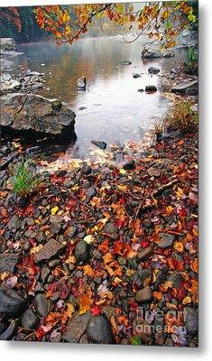 Williams River Monongahela National Forest Metal Print by Thomas R Fletcher