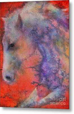 Wind Horse Metal Print by Robert Hooper