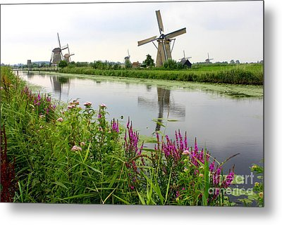 Windmills Of Kinderdijk With Wildflowers Metal Print by Carol Groenen