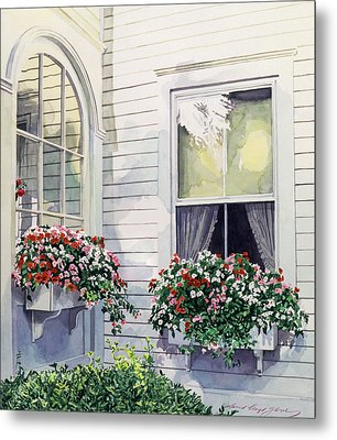 Window Boxes Metal Print by David Lloyd Glover