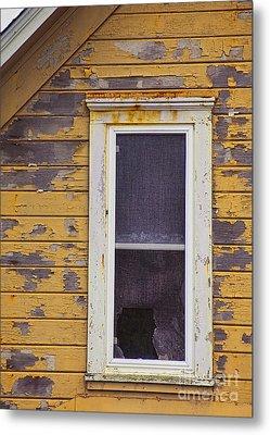 Window In Abandoned House Metal Print by Jill Battaglia