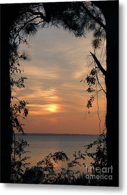 Window To Another World Metal Print by Ela Sita