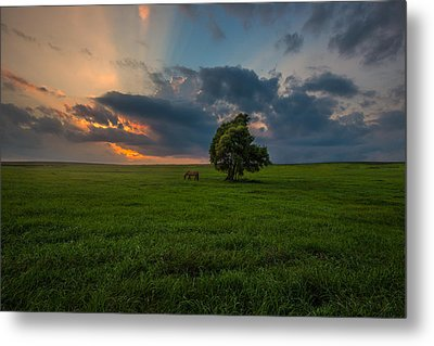 Windows Sd Metal Print by Aaron J Groen