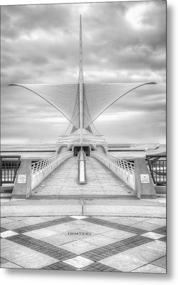 Wing Span Metal Print by Scott Norris