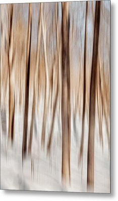 Winter Abstract Metal Print by Bill Wakeley