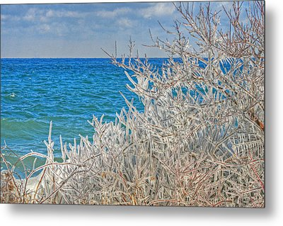 Winter Beach Metal Print by Michael Allen