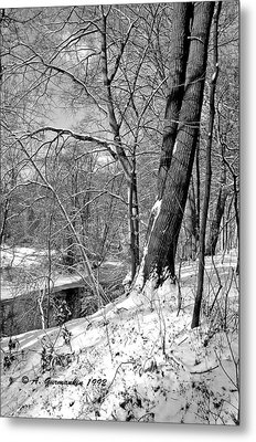 Metal Print featuring the photograph Winter By A Pennsylvania Stream by A Gurmankin