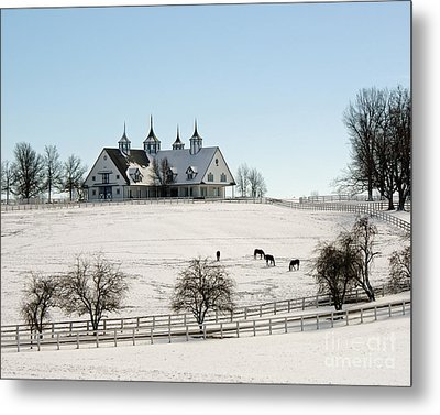 Winter Dream Metal Print by Roger Potts