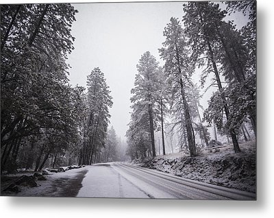 Winter Driven Metal Print by Anthony Citro