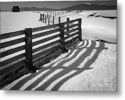 Winter Fence Metal Print by Inge Johnsson