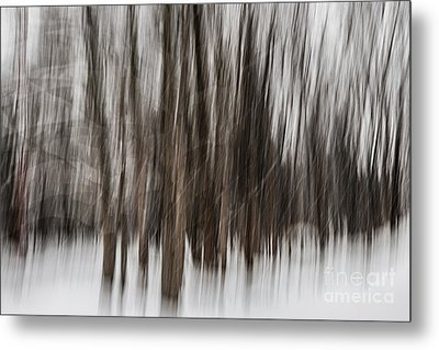 Winter Forest Abstract Metal Print by Elena Elisseeva