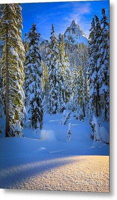 Winter Forest Metal Print by Inge Johnsson