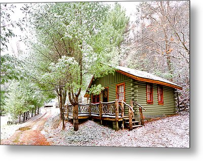 Winter Green Metal Print by Debra and Dave Vanderlaan