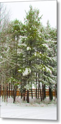 Winter Landscapes Metal Print by Lanjee Chee