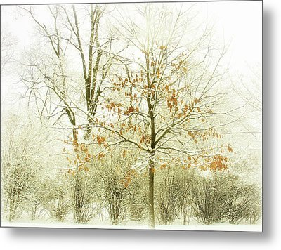 Winter Leaves Metal Print by Julie Palencia