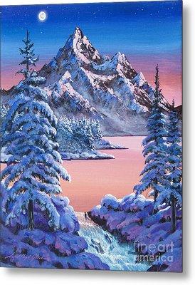 Winter Moon Metal Print by David Lloyd Glover