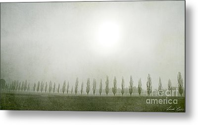 Winter Morning Londrigan 7 Metal Print by Linda Lees
