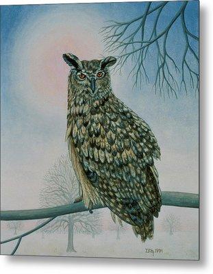 Winter Owl Metal Print by Ditz