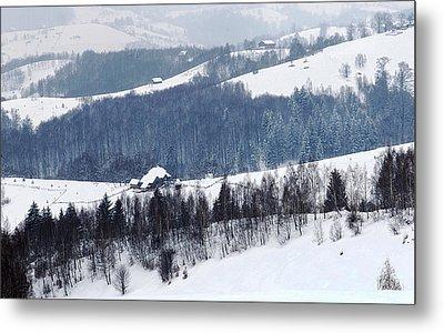 Winter Picture I Metal Print by Nedelcu Valeriu