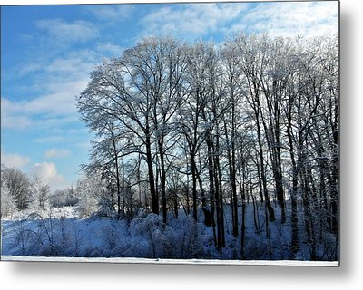 Winter Reflections Metal Print by Dawdy Imagery