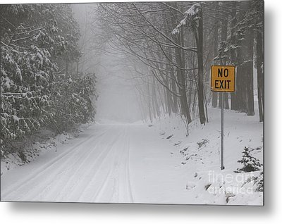 Winter Road During Snow Storm Metal Print by Elena Elisseeva