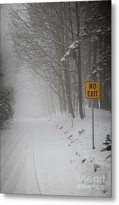 Winter Road During Snowfall I Metal Print by Elena Elisseeva