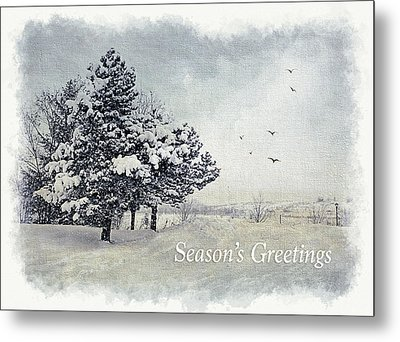 Winter Scene Greeting Card Metal Print by Julie Palencia