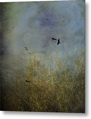 Winter Song Metal Print by Diane Schuster