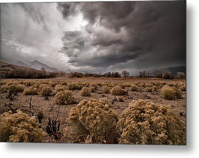 Winter Storm Metal Print by Cat Connor