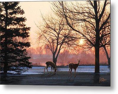 Winter Sunrise Greeting Metal Print by Doug Kreuger