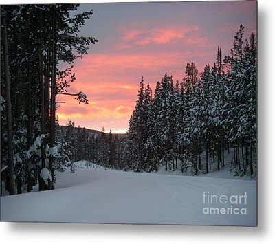 Winter Sunset Metal Print by Jeanette French