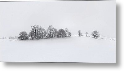 Winter Tree Line In Indiana Metal Print by Julie Dant