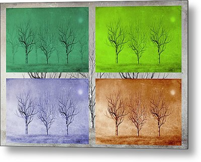 Winter Trees  Metal Print by David Dehner