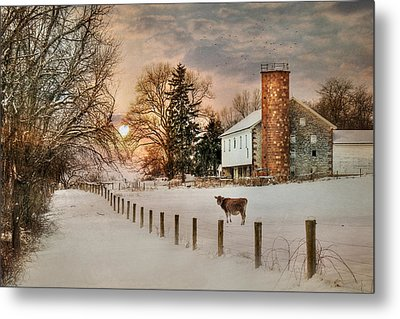 Winter Warmth Metal Print by Lori Deiter