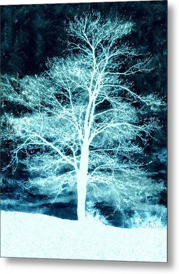 Winter Whispers Through The Night Metal Print by Janine Riley