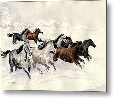 Winter Wishperer Metal Print by Melly Terpening