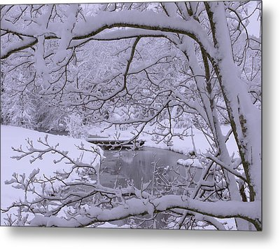 Winter Wonderland 2 Metal Print by Mike McGlothlen