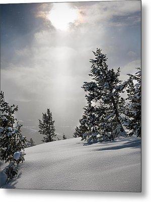 Winter Wonderland Metal Print by Leland D Howard